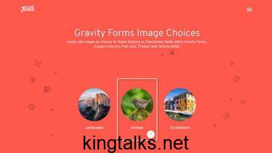 Photo of Gravity Forms Image Choices Add-On v1.2.17