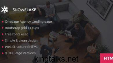 Photo of SNOWFLAKE v1.0 – Onepage Agency HTML Template