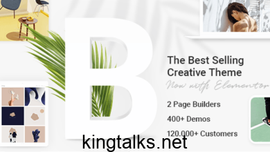 Bridge 24.5 Nulled - Creative Multipurpose WordPress Theme