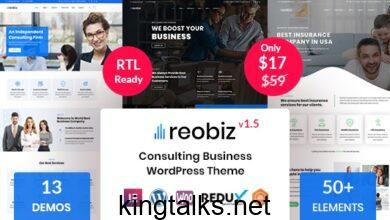 Reobiz 3.2 - Consulting Business WordPress Theme