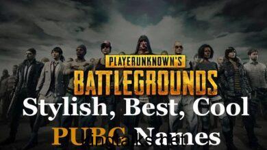 PUBG Names ideas